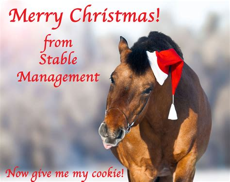 Merry Christmas from Stable Management! - The #1 Resource